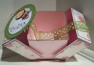 Babybug_box_open