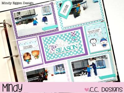 2 CCD-Mindy